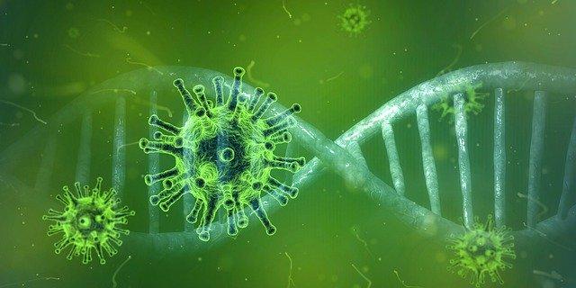 coronavirus-4833754_640
